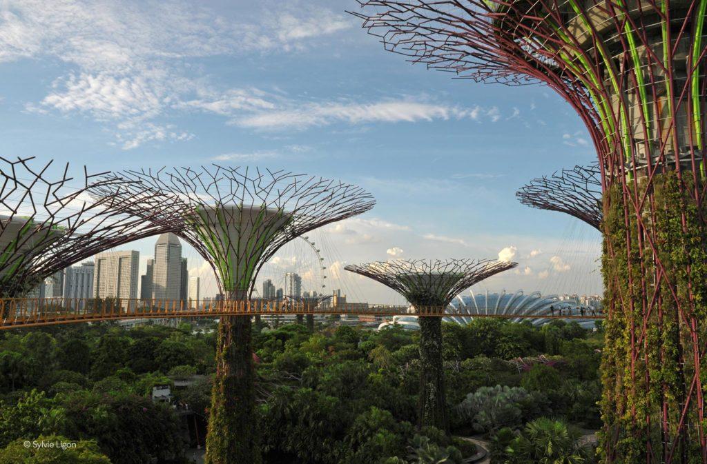 Singapour - Garden