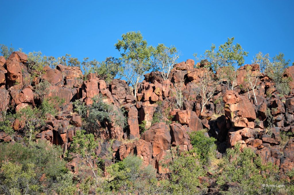 Waterberg - Namibie