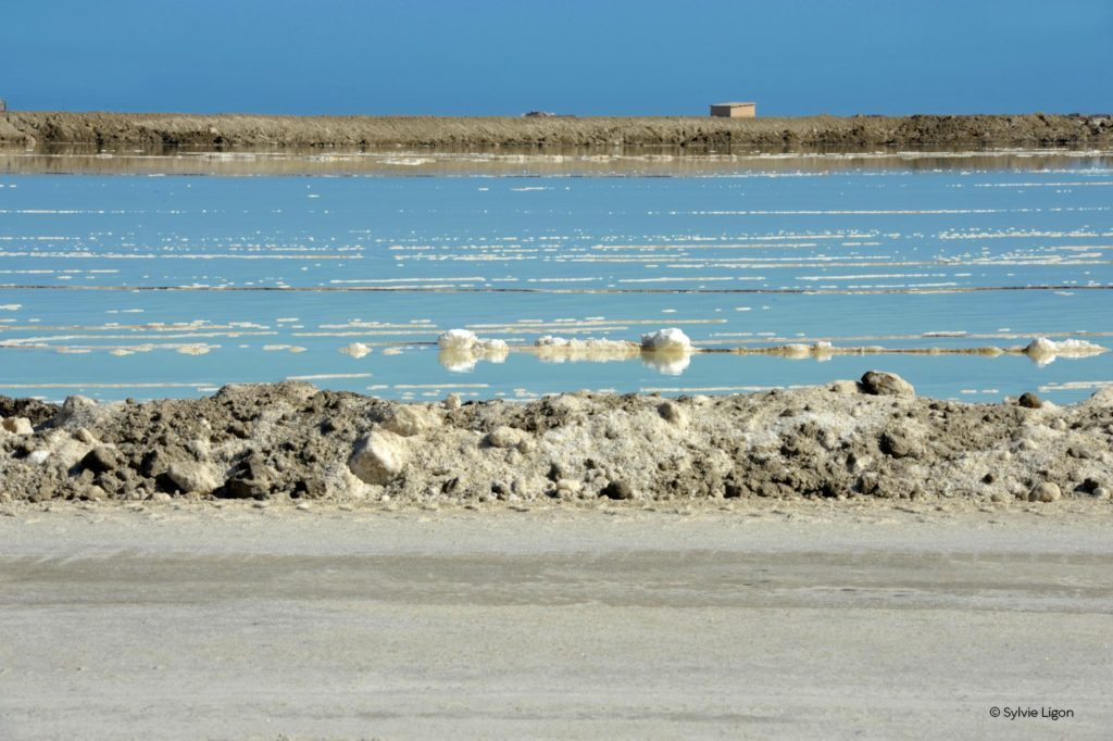 Sel et sable en Namibie