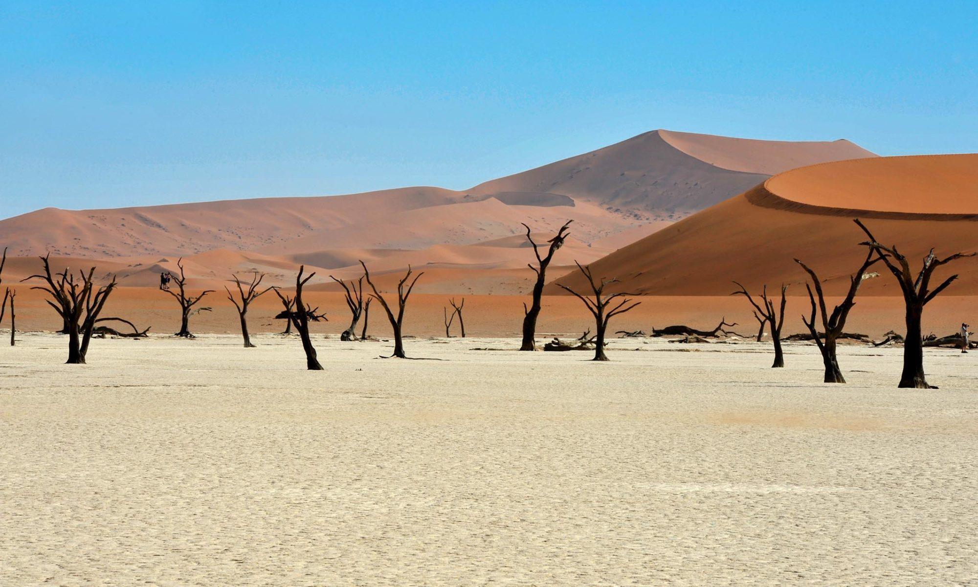 Désert en Namibie