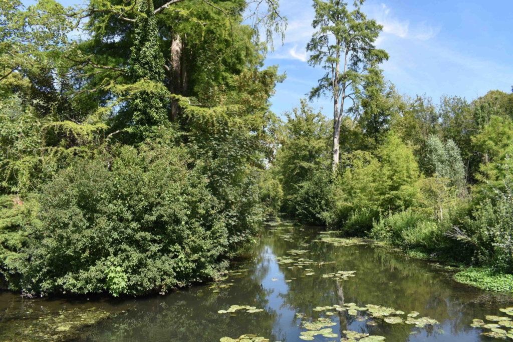 Marais Domaine de Montauger