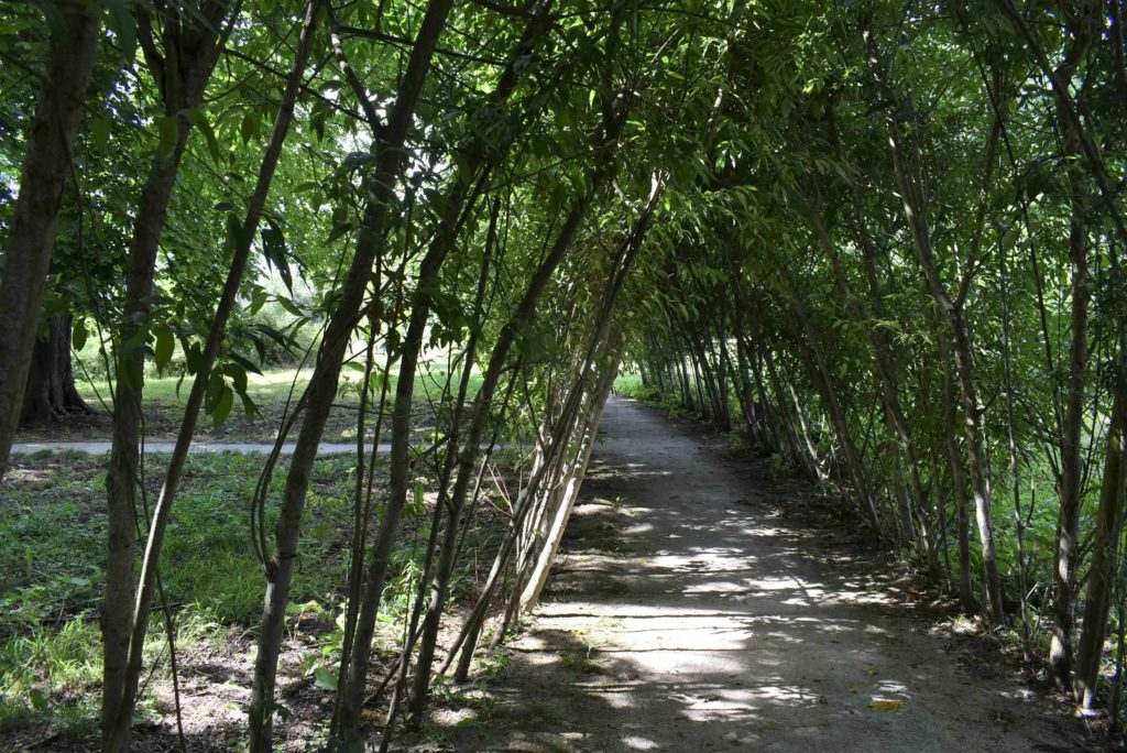 Parc Domaine de Montauger
